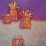 イソギンチャク sea anemone