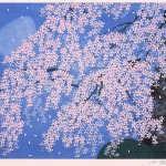 円山公園枝垂桜